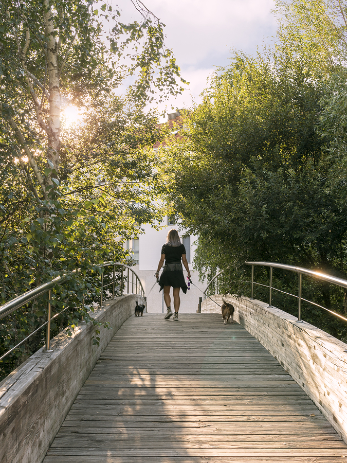 Walking a dog is one way to incorporate exercise into daily life.